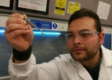 Estas córneas de hidrogel poderiam devolver a vista a milhões de pessoas