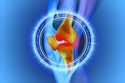"""""""Curativo vivo"""" de células-tronco para tratar lesões no joelho"""