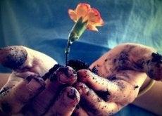 O amor precisa ser cuidado desde a raiz para que floresça a cada dia