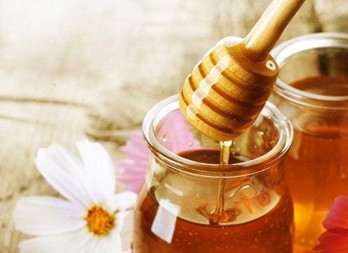 mel-de-abelhas