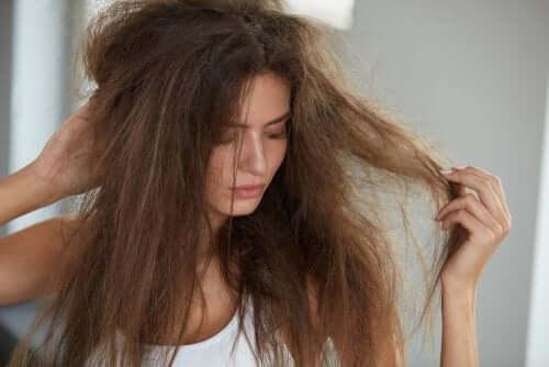Receitas caseiras para o cabelo ressecado