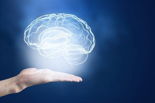 Truques perfeitos para potencializar sua memória
