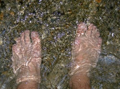 pes-mergulhados-na-agua