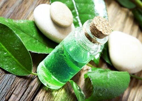 Oleo de árvore de chá para desinfetar frutas e verduras