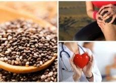 Sementes de chia: 9 grandes benefícios que elas nos oferecem