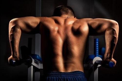 exercicios-triceps