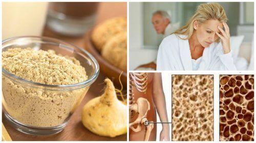 Os 7 interessantes benefícios da raiz de maca peruana para a mulher