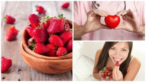 Benefícios que os morangos oferecem à saúde