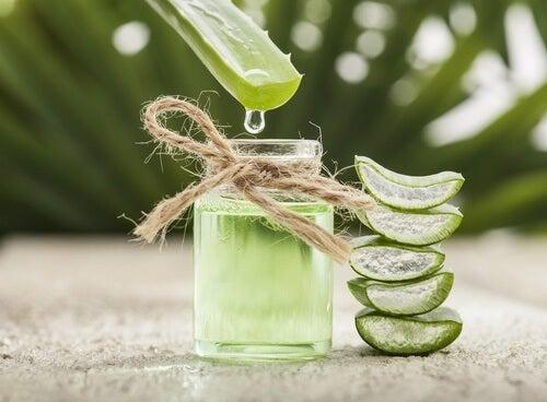 Gel de aloe vera é um remédio eficaz contra verrugas