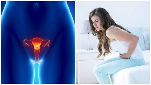 Câncer de ovário: 7 dados importantes que você deve saber
