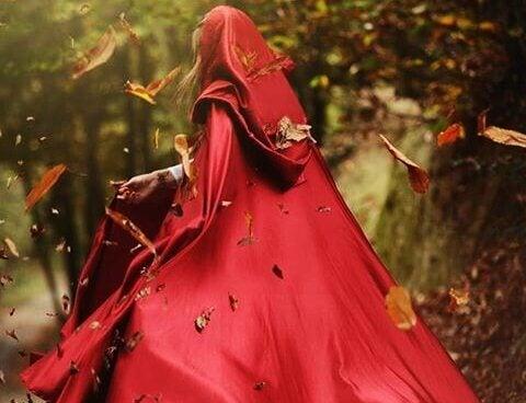 Chapeuzinho vermelho sem medo