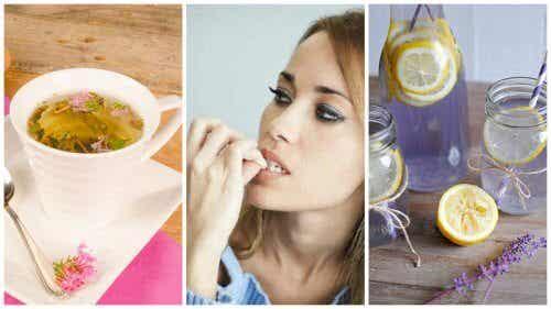 6 remédios naturais que ajudam a acalmar os nervos