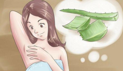 5 desodorantes naturais para dizer adeus ao mau cheiro nas axilas