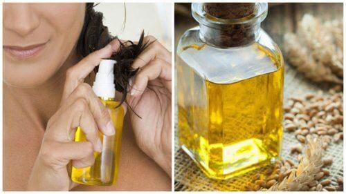 6 benefícios do óleo de gérmen de trigo para o cabelo