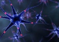 Sistema nervoso: 6 dicas para fortalecê-lo naturalmente