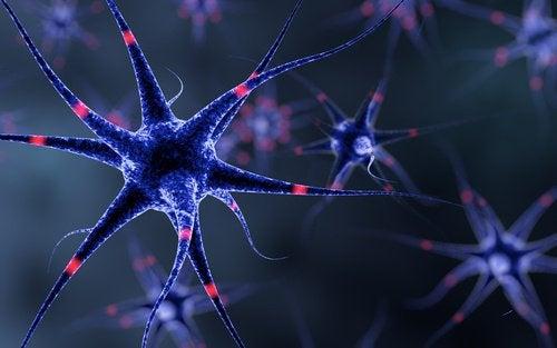 6 dicas para fortalecer seu sistema nervoso