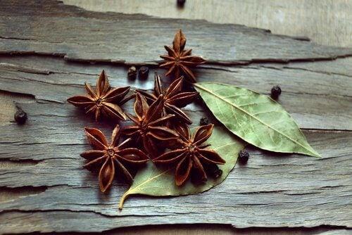 Anis, uma das ervas curativas para tratar intestino irritável