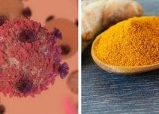 Cúrcuma: benefícios na luta contra o câncer