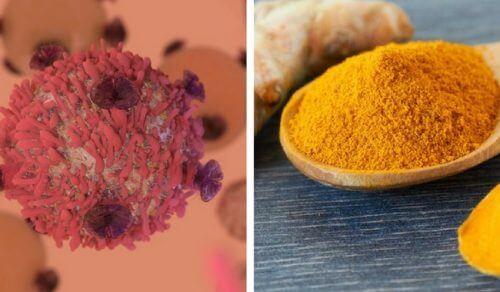 Benefícios da cúrcuma na luta contra o câncer