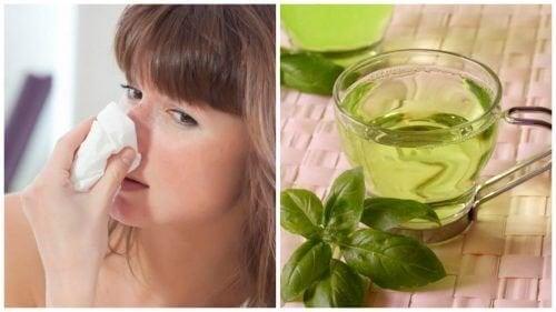 Combata a congestão nasal com estes 5 remédios naturais