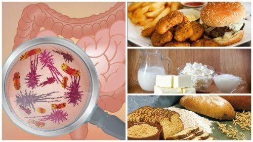 Os 7 alimentos que afetam a sua saúde intestinal
