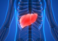 6 alimentos de origem vegetal para limpar seu fígado naturalmente