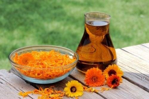 Tratamento de azeite de oliva e calêndula para as estrias
