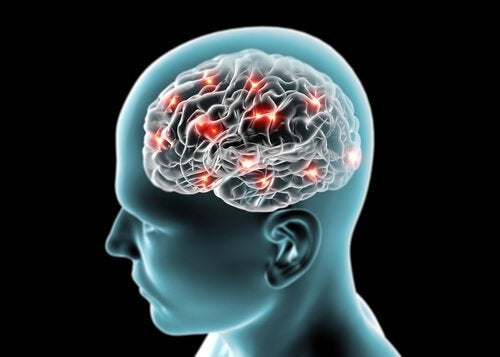 Cérebro saudável