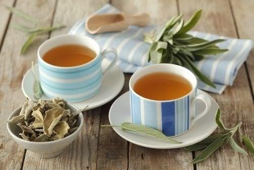 Chá de sálvia para acalmar o cólon irritável