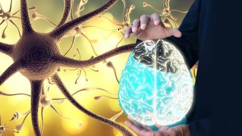 """Como """"despertar"""" o nervo vago para desfrutar de um bem-estar integral"""