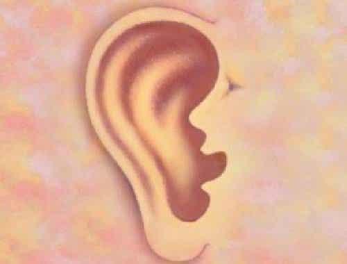 O que as suas orelhas dizem sobre você
