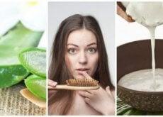 Queda de cabelo: 6 remédios caseiros para combatê-la