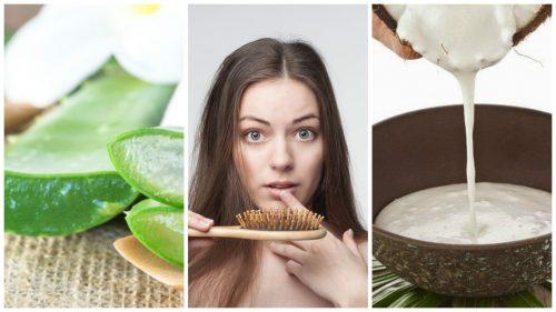 Combata a queda de cabelo com estes 6 remédios caseiros