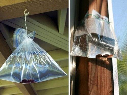 Sacos de vodca contra as moscas