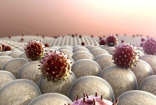 Não dormir o suficiente pode deixar o sistema imunológico enfraquecido