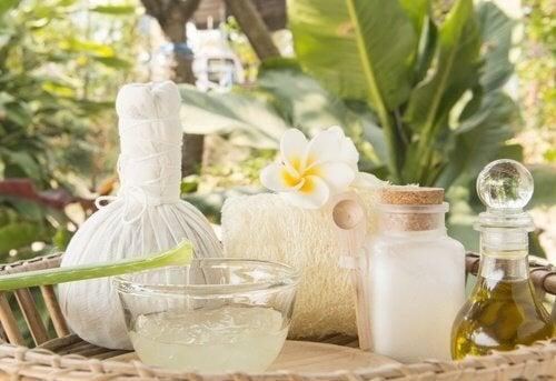 Aloe vera e óleo de coco para cuidar do cabelo