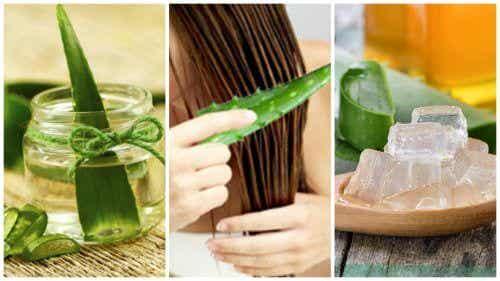5 tratamentos com aloe vera para fortalecer o cabelo