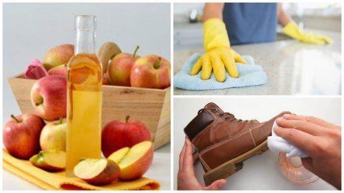 Os 7 melhores usos domésticos que você pode dar ao vinagre de maçã