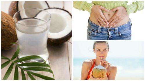 10 benefícios de consumir água de coco regularmente