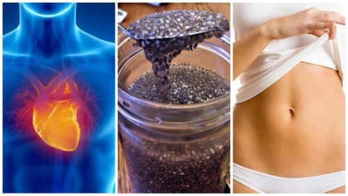 8 razões para começar a incluir sementes de chia em sua dieta