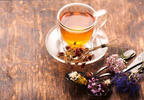 Chá de valeriana para controlar ansiedade nervosa