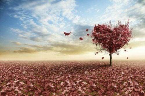 Árvore com forma de coração interpretando o desamor
