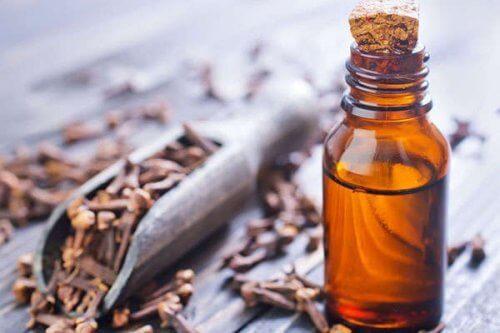 Óleo de cravo para aliviar a inflamação nas gengivas
