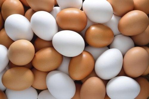 máscara capilar de ovo