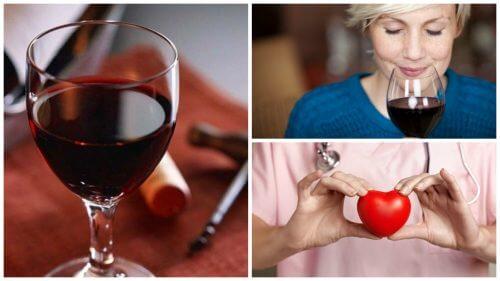 10 razões pelas quais o vinho tinto faz bem para a sua saúde