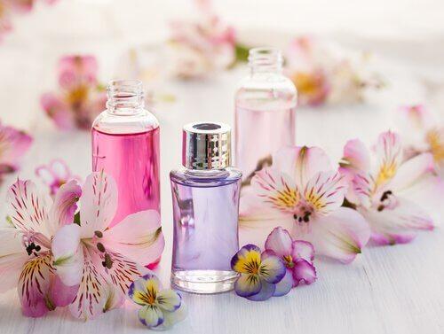 Perfumes para embelezar