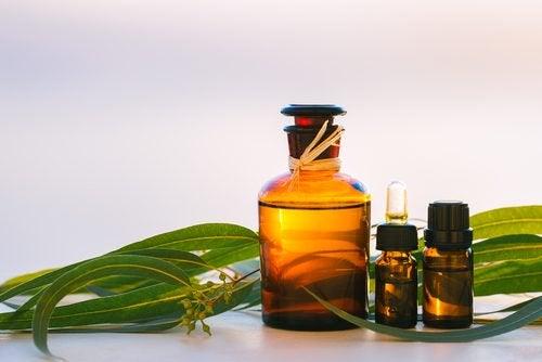 Óleo hidratante para peles secas