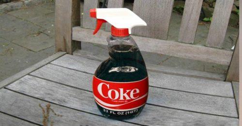 Coca-cola para cuidar do jardim