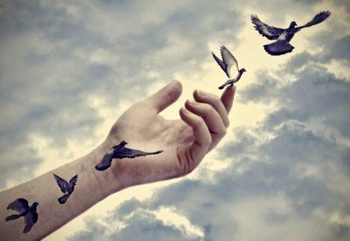 Mão deizando pássaros livres