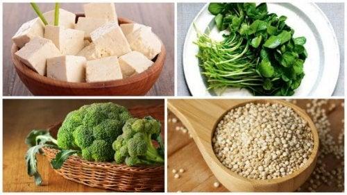 Fontes de proteína vegetal da pirâmide nutricional